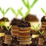4 ý tưởng làm giàu nhanh chóng ở nông thôn hiện nay